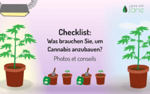 Checkliste: Was brauche ich, um Cannabis anzubauen? Bilder + Tipps [2021]