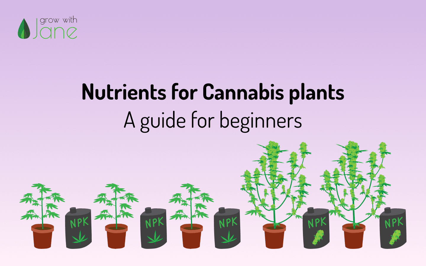 Cannabis plant nutrients Grow with Jane